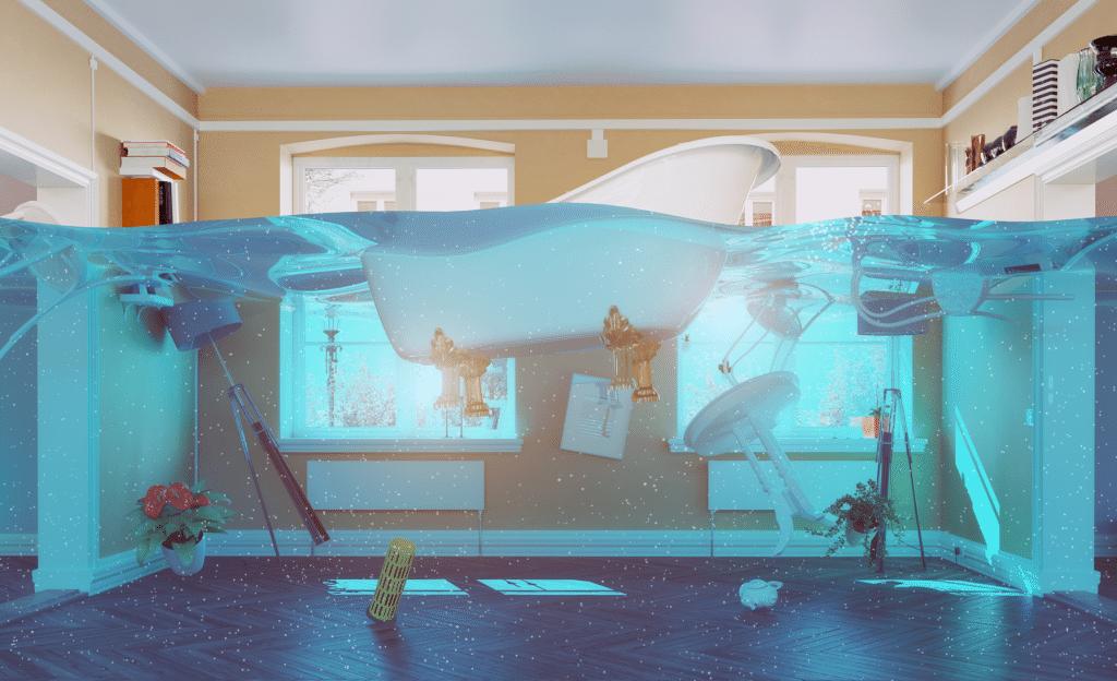 vandskadeservice